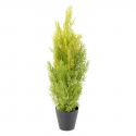 Cyprès artificiel new vert clair 60 et 90cm