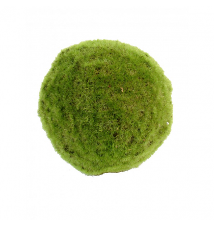 Mousse artificielle boule Ø18 à Ø35cm
