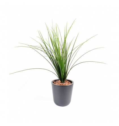 Herbe onion grass artificielle 55cm