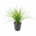 Herbe artificielle Juncus 50cm | Graminée artificielle