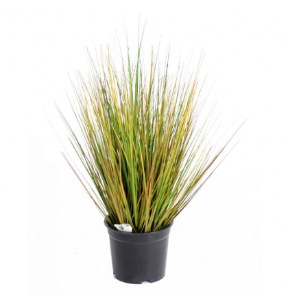 Onion Grass GF artificiel 55 et 90cm