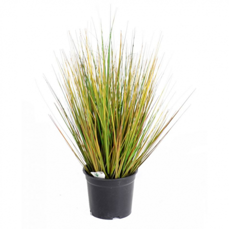 Onion Grass GF artificiel 55 et 90cm
