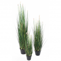 Presle Grass artificielle 60 à 120cm | Graminée artificielle