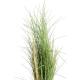 Herbe Honey Grass artificiel 80 et 110cm