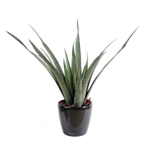 Aloevera Ferox artificielle 65cm