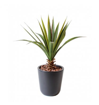 Aloe Ferox artificiel 45 cm