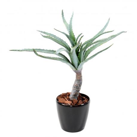 Aloevera tronc artificiel 80cm