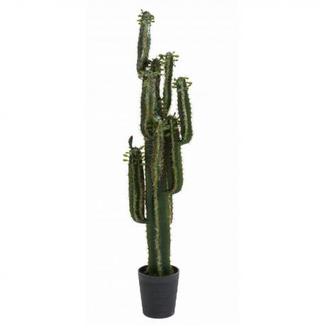 Cactus Finger B 150cm