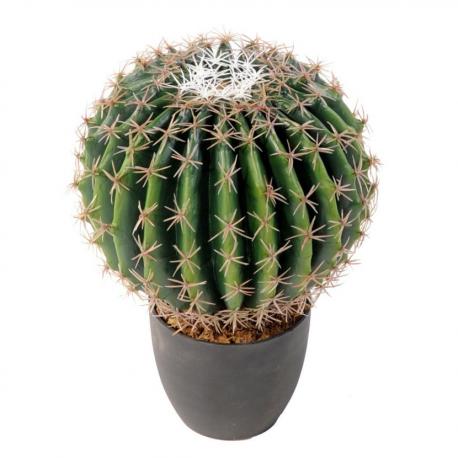 Cactus artificiel Echino Ø25 et Ø35cm