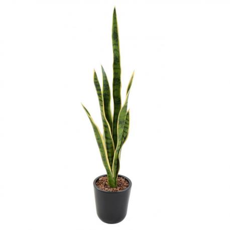 Sansevieria Piquet artificiel 75cm