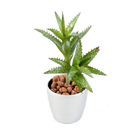 Succulent mini artificiel 18cm