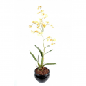 Orchidée artificielle Oncidium 60cm