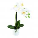 Orchidée artificielle Phaleanopsis 35cm