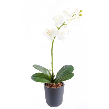Orchidée artificielle Phaleanopsis 65cm
