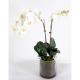 Orchidée artificielle Phaleanopsis 70cm avec vase