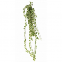 Lierre artificiel panaché - 801 feuilles - 130cm