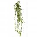 Lierre artificiel panaché - 801 feuilles - 130cm - Traité anti UV