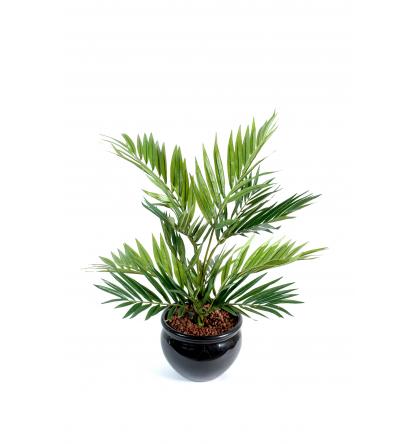 Chamaeodorea (50cm) | Plante verte artificielle
