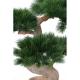 Pin Bonsai artificiel UV 92cm