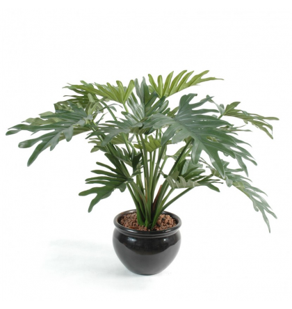 Philodendron selloum artificiel 50cm