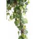 Vigne round (200cm)