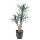 Yucca rostrata artificiel 155cm