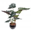 Alocasia 65cm | Plante verte artificielle