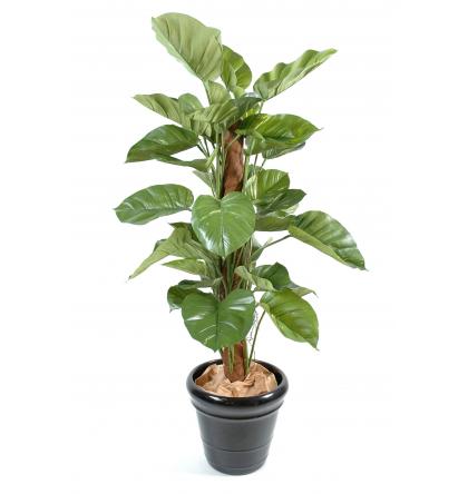 Pothos géant artificiel 150cm | Plante verte artificielle