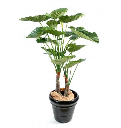 Alocasia calodora (120cm) | Plante verte artificielle