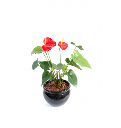 Anthurium (45cm) | Plante verte artificielle