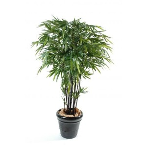 Bambou Black Natural artificiel