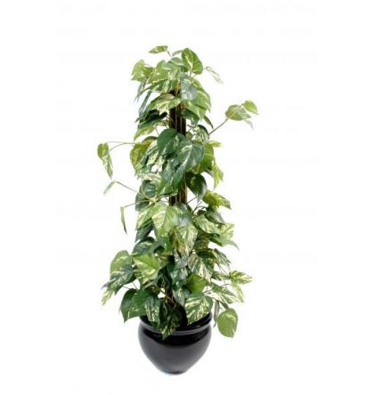 Pothos tuteur coco (100cm) | Plante verte artificielle