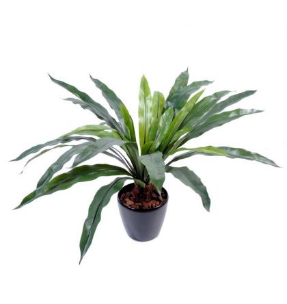 Asplenium avec tronc (60cm) | Plante verte artificielle