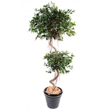 Ficus artificiel spirale 2 boules 185cm