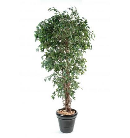 Ficus lianes artificiel petites feuilles de 150 à 210cm
