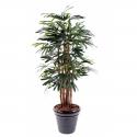 Palmier Raphis Lady artificiel 150 à 210cm