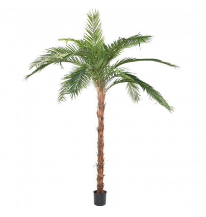 Palmier coconut palm artificiel 400cm plantes for Acheter palmier artificiel