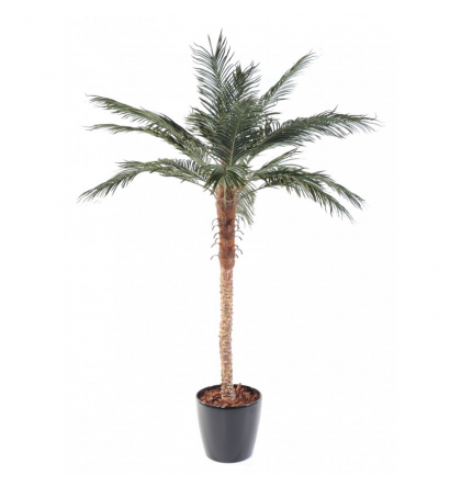 Palmier artificiel Phoenix Palm 210cm