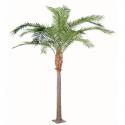 Palmier artificiel Phoenix Canariensis 380 et 440cm