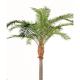 Palmier artificiel Phoenix Carianensis