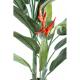 Héliconia 180cm