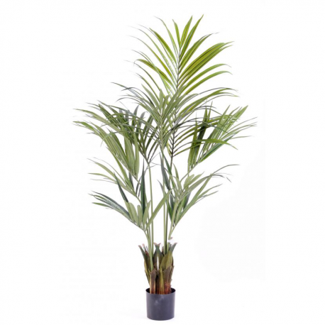 Kentia Palm artificiel 150 à 220cm