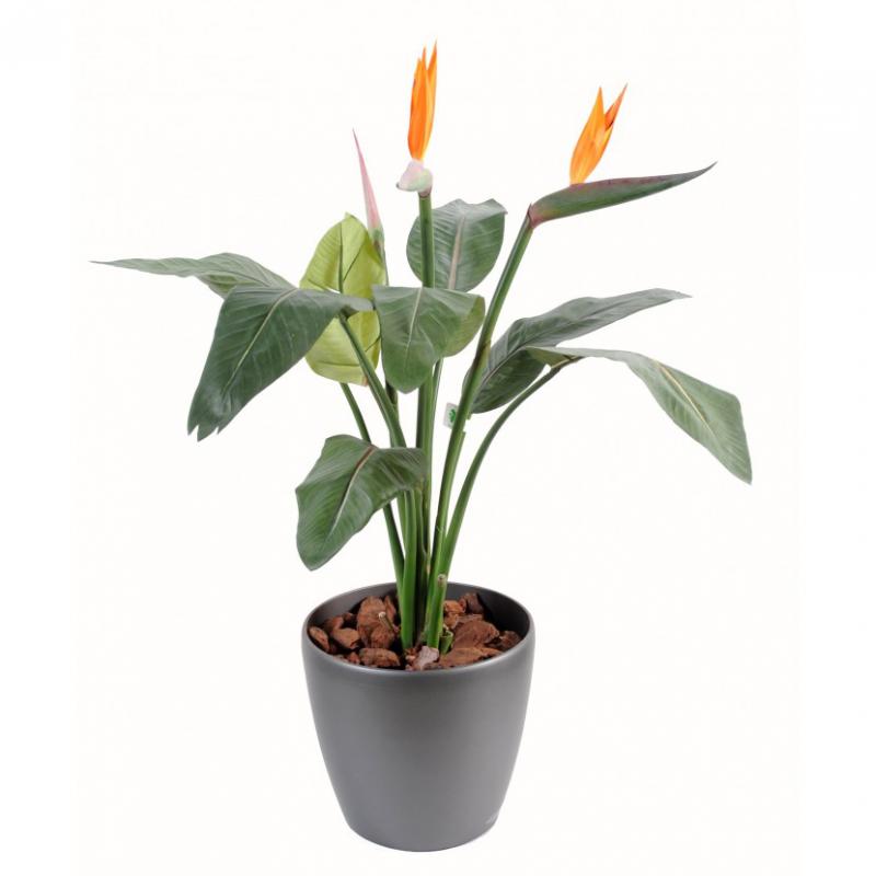 Strelitzia artificiel plante 95 150cm plantes for Plantes a commander