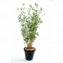 Bambou artificiel multitree de 100 à 190cm
