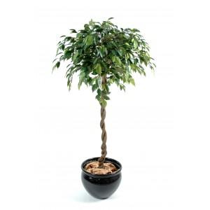 Ficus artificiel boule Natajsa