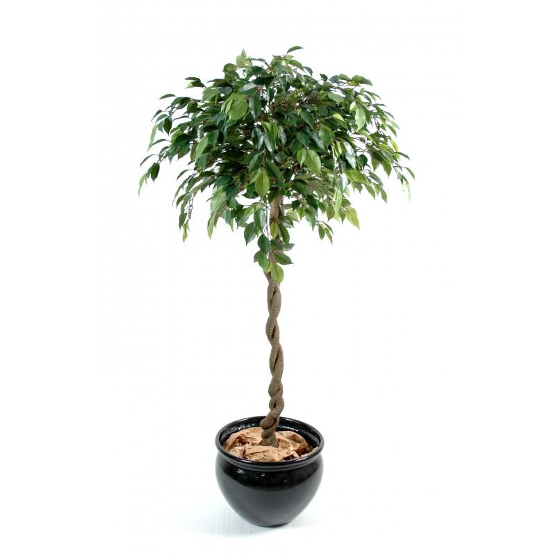 viva verde vente et location de plantes artificielles haut de gamme. Black Bedroom Furniture Sets. Home Design Ideas