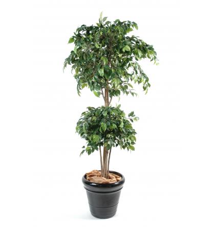 Ficus artificiel double boule 150 et 180cm