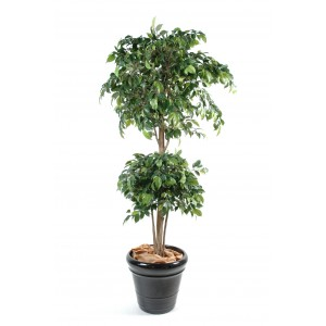 Ficus artificiel double boule