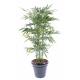 Bambou artificiel New Green