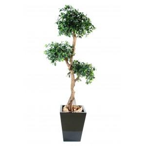 Ficus artificiel retusa crazy 150 et 180cm